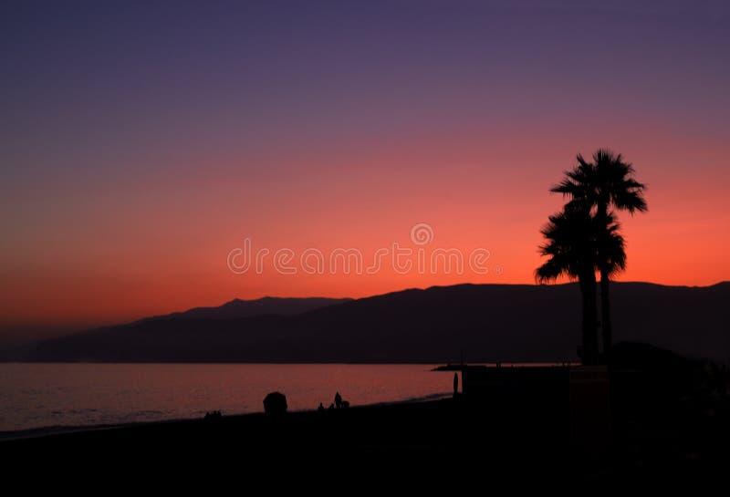 Sonnenuntergang-Strand und Palmen orange und purpurrot stockfotos