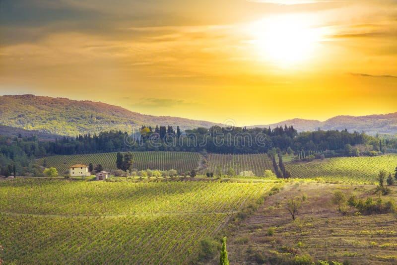 Sonnenuntergang an Toskana-Wiesen stockfoto