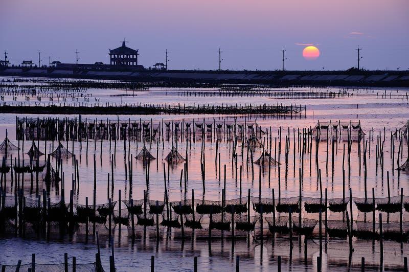 Sonnenuntergang und intertidale Zone lizenzfreie stockfotos