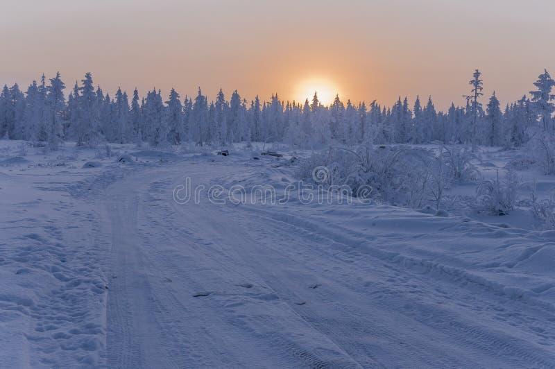 Sonnenuntergang und Sonnenaufgänge Russland, UralJanuary, Temperatur -33C Orange Himmel und Schattenbilder von Bäumen auf dem Hin lizenzfreies stockfoto