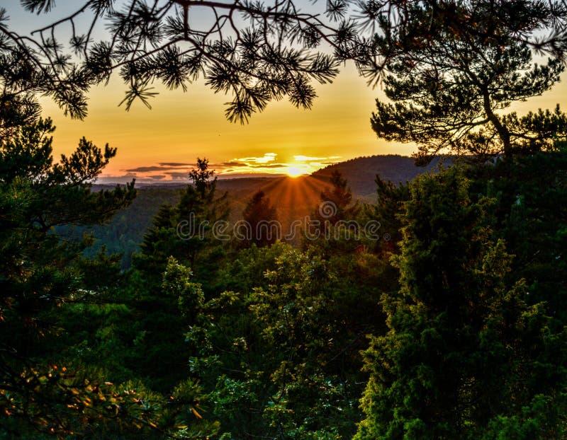 Sonnenuntergang von den Wäldern von Kristiansand in Norwegen lizenzfreie stockfotos