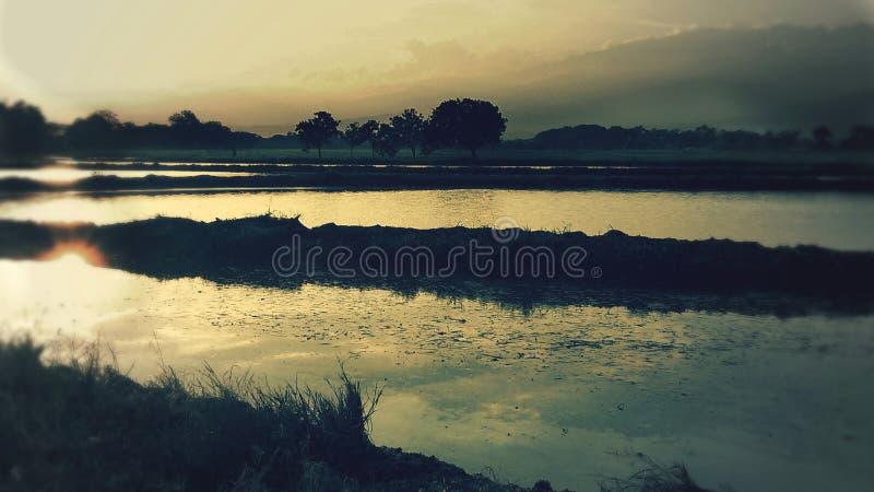 Sonnenuntergang von See lizenzfreies stockfoto