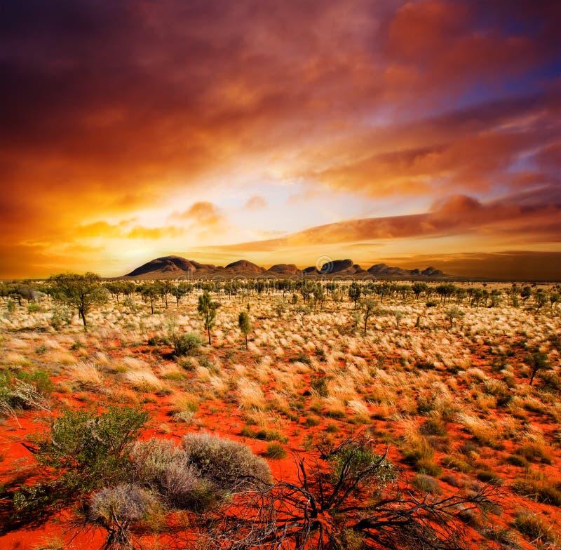 Sonnenuntergang-Wüsten-Schönheit lizenzfreies stockfoto
