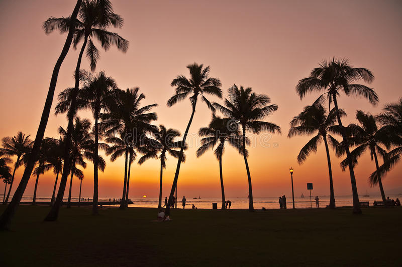 Sonnenuntergang in Waikiki Hawaii stockbilder