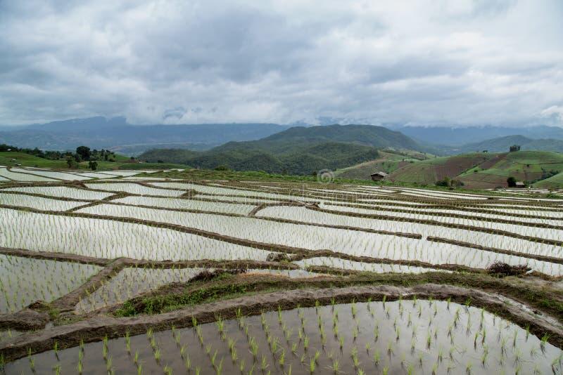 Sonnenuntergang Yunnans China stockbilder