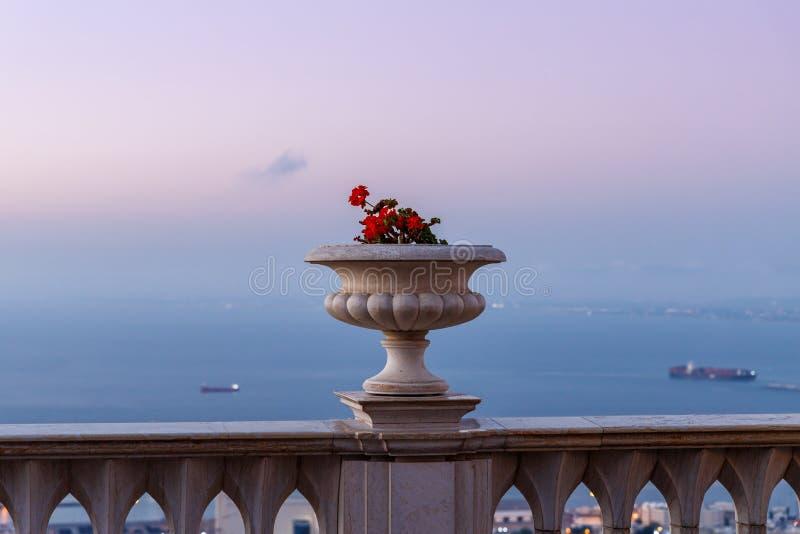 Sonnenuntergangansicht des dekorativen Topfes mit Pelargonien auf den Balkongeländern auf der oberen Terrasse des Bahai-Gartens i lizenzfreies stockfoto