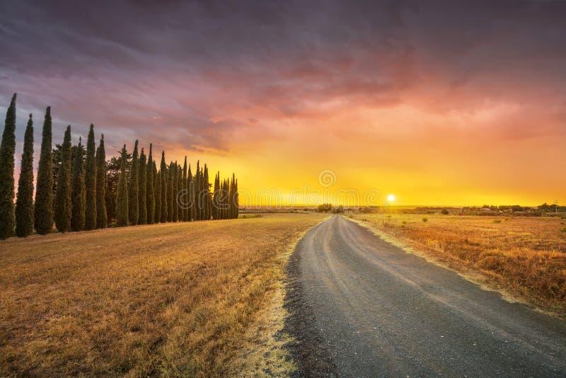 Sonnenunterganglandschaft im schlechten Wetter Landstraße- und Zypressenbäume M lizenzfreie stockbilder