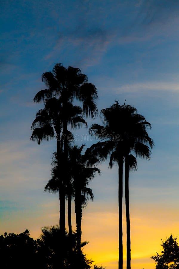Sonnenuntergangparadies stockfotografie