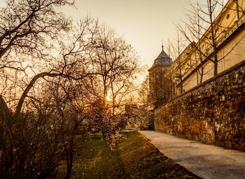 Sonnenuntergangs-Pecs-Stadt stockfoto