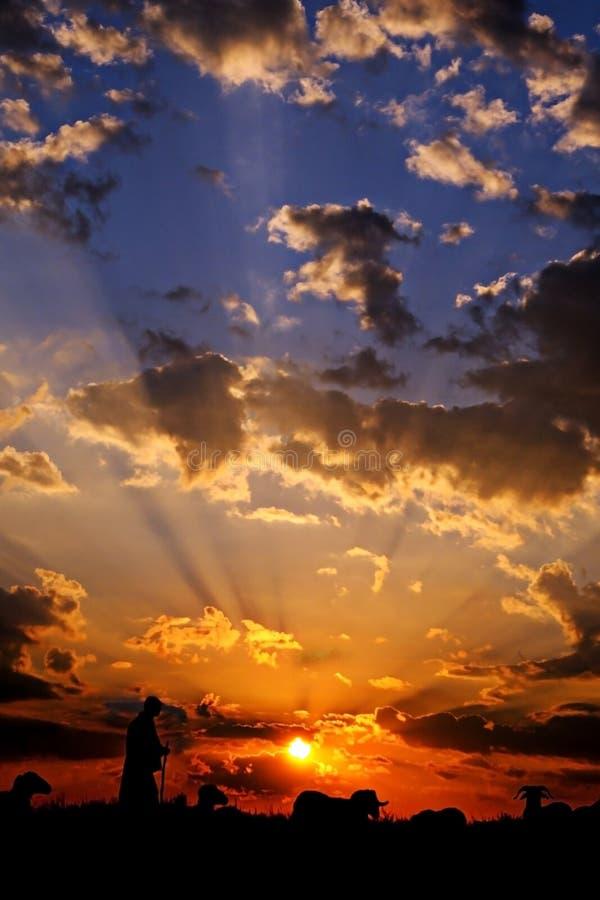 Sonnenuntergangschattenbild stockfotografie