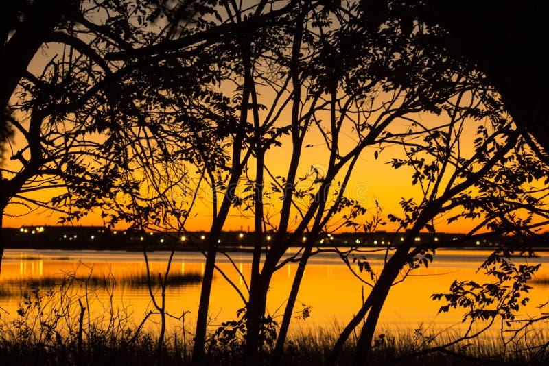 Sonnenuntergangschattenbild in der Milford-Punkt-Küstenmitte schließen herein an lizenzfreies stockfoto