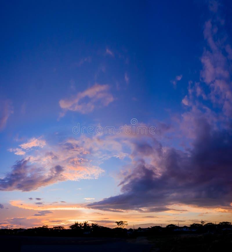 Sonnenuntergangschattenbild-Waldpanorama in der Stadt stockfotos