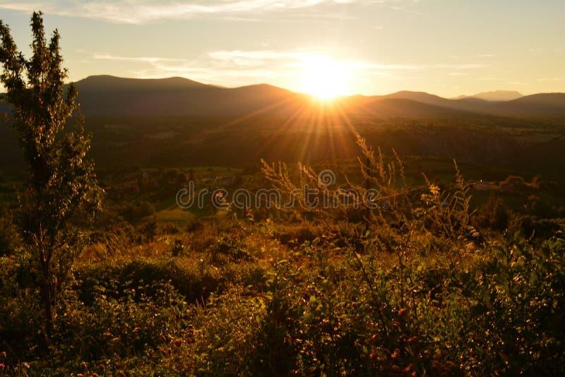 Sonnenuntergangsommer lizenzfreie stockfotografie