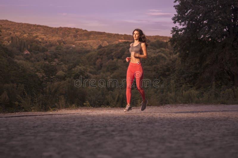 Sonnenuntergangsonnenaufgang, hölzerne Bäume, laufendes Rütteln, ein junges erwachsenes wom stockbilder