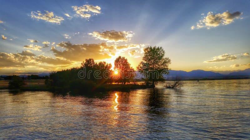 Sonnenuntergangstrahlen durch Bäume auf dem See stockfotografie