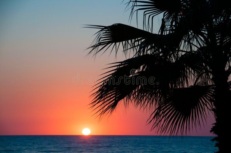 Sonnenuntergangstrand, Meer glättend, Palmen lizenzfreies stockbild