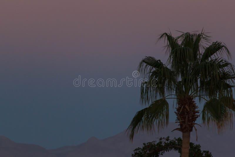 Sonnenuntergangstrand mit Palmen und schöner Himmel gestalten landschaftlich Reise, Tourismus, Ferienkonzepthintergrund mexiko Pa lizenzfreie stockfotografie