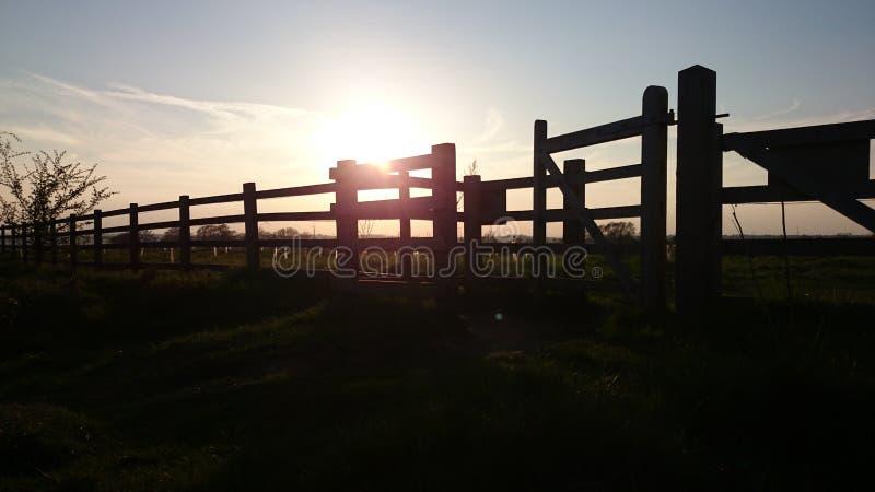 Sonnenuntergangzaun lizenzfreies stockbild