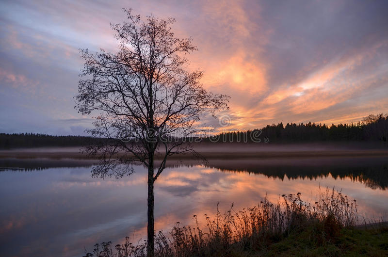 Sonnenuntergangzeit im Ufer stockbild