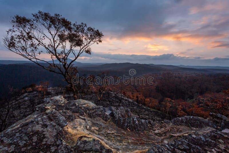 Sonnenunterstüm und Regen über verbranntes Busland in Australien stockfotos