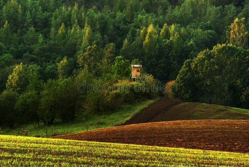 Sonnige Landschaft lizenzfreies stockbild