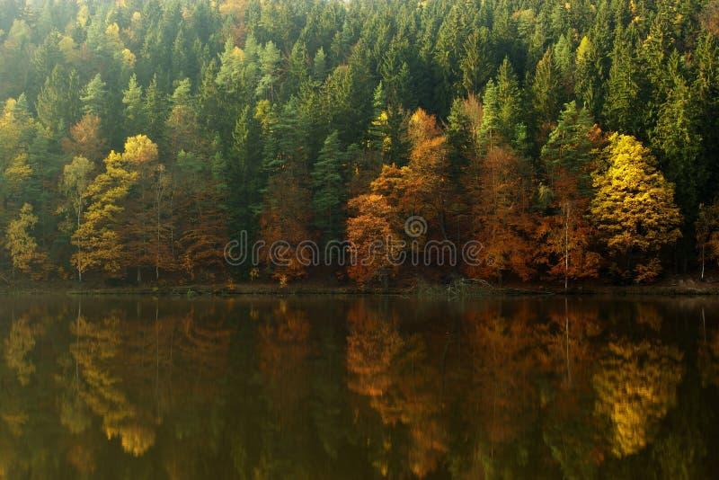 Sonniger Herbst stockfotografie