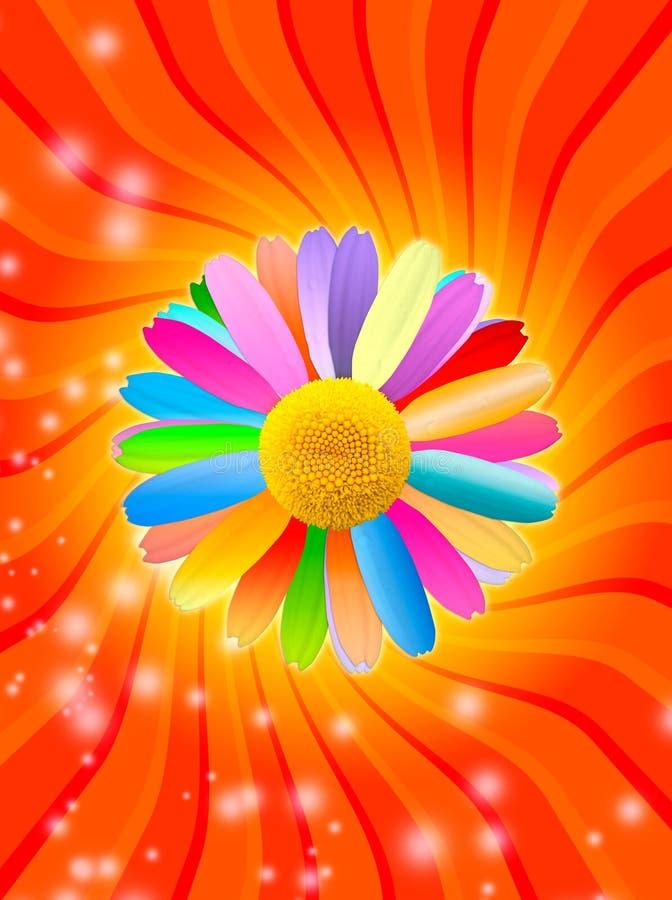 Sonniger Hintergrund mit mehrfarbiger Kamille stock abbildung