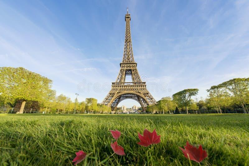Sonniger Morgen und Eiffelturm, Paris, Frankreich lizenzfreie stockfotos