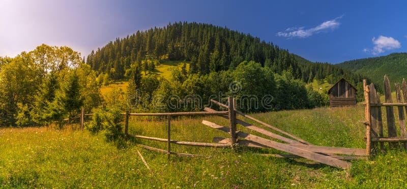 Sonniger Tag in den Karpaten-Bergen lizenzfreie stockbilder