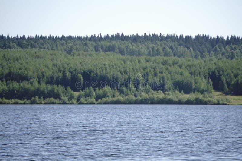 sonniger Tag der Schönheit auf dem See stockfotos