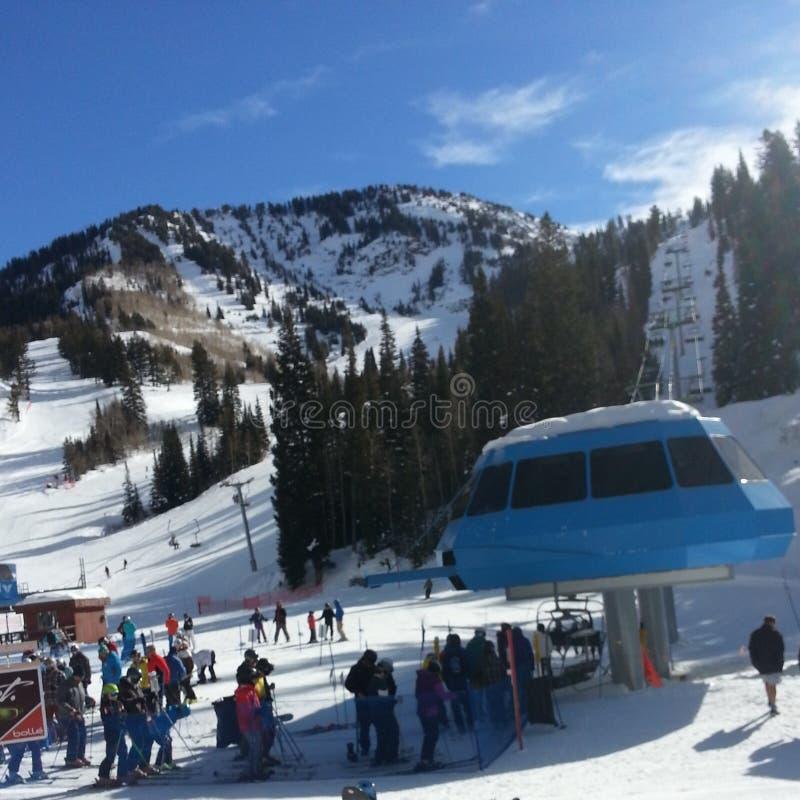 Sonniger Tag am Schneevogel stockfotos