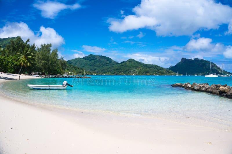 Sonniger tropischer weißer sandiger Strand des Französisch-Polynesiens stockfotografie