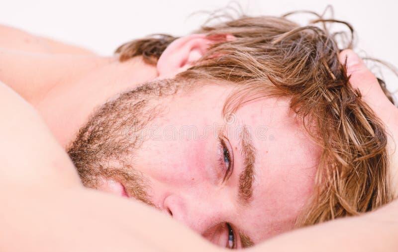 Sonno barbuto non rasato del fronte dell'uomo rilassarsi o svegliare appena Macho barbuto del tipo si rilassa nella mattina Il to immagine stock