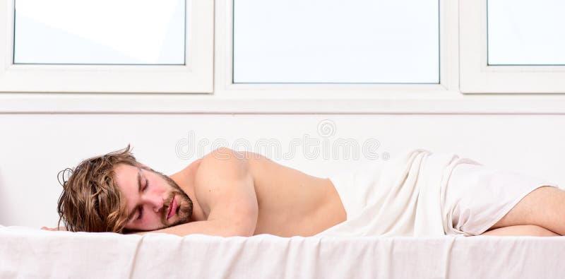 Sonno bello del tipo dell'uomo Il sonno è vitale al vostre fisico e salute mentale Abitudini sane di sonno Barbuto non rasato del immagine stock libera da diritti