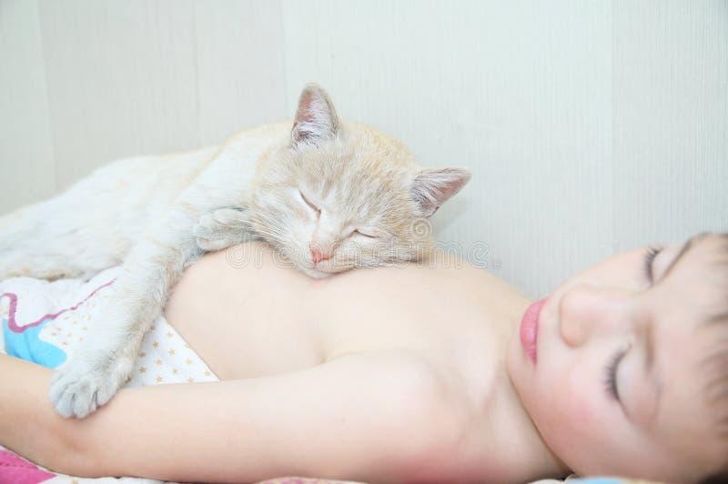 Sonno del ragazzo con il gatto, l'animale domestico favorito che si trovano sul petto del bambino, le interazioni fra i bambini e fotografia stock libera da diritti