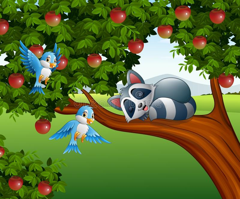 Sono do guaxinim dos desenhos animados na árvore de maçã ilustração do vetor