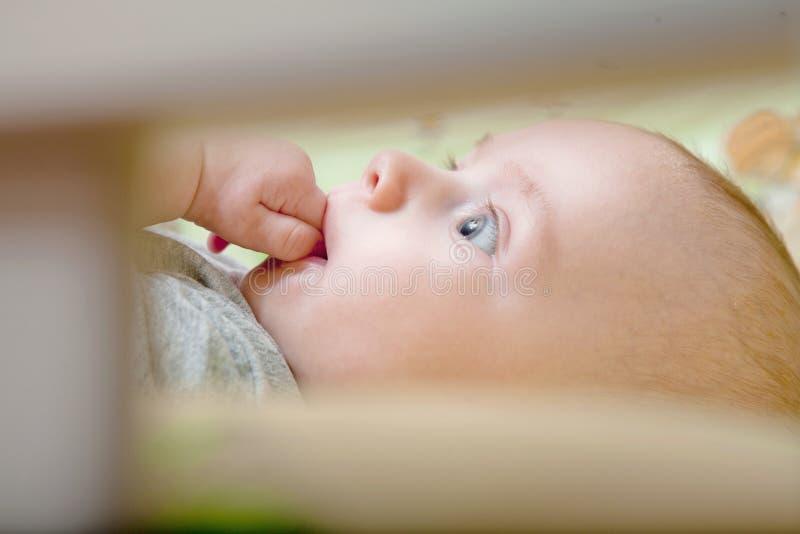 Sono repousante do ` s do bebê Bebê recém-nascido em uma ucha de madeira O bebê dorme no berço da cabeceira Cofre forte que vive  imagem de stock royalty free