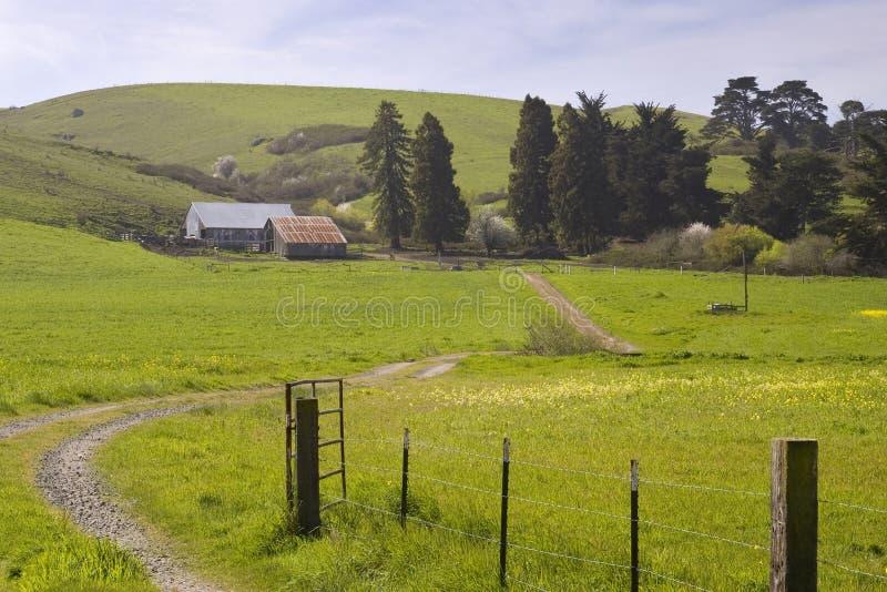 Sonoma County ranch arkivfoto