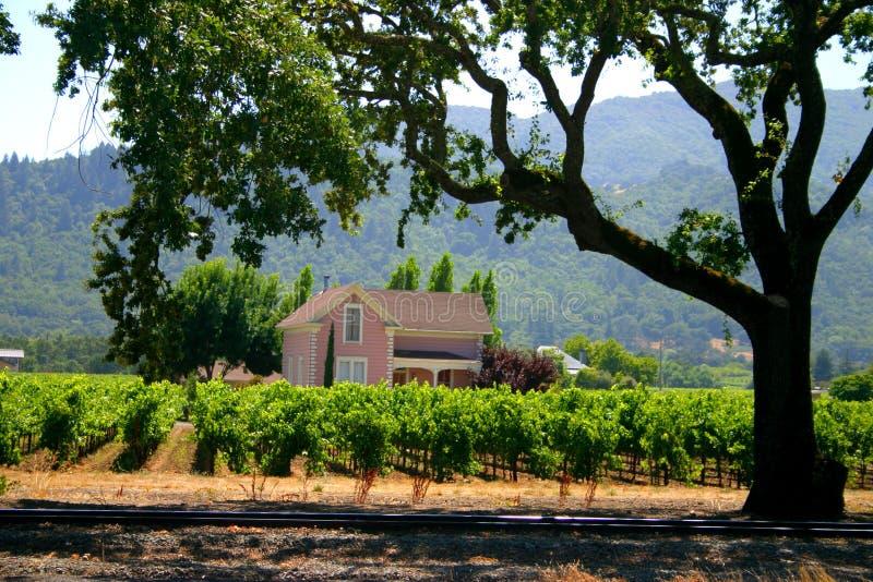 Sonoma en Napa Vallei, Californië royalty-vrije stock fotografie