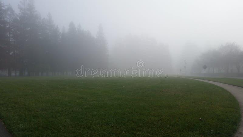 Sonoma stan zdjęcia stock
