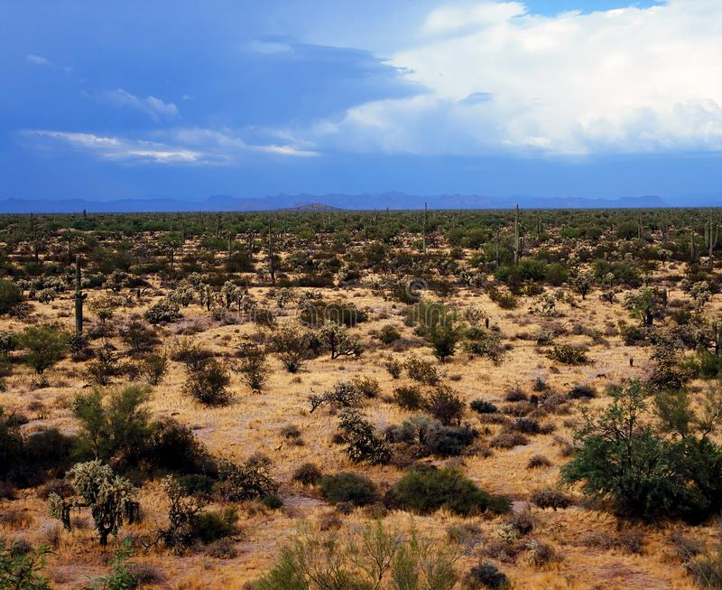 Sonora Desert Arizona. Mountains in the Sonora desert in central Arizona USA stock photography