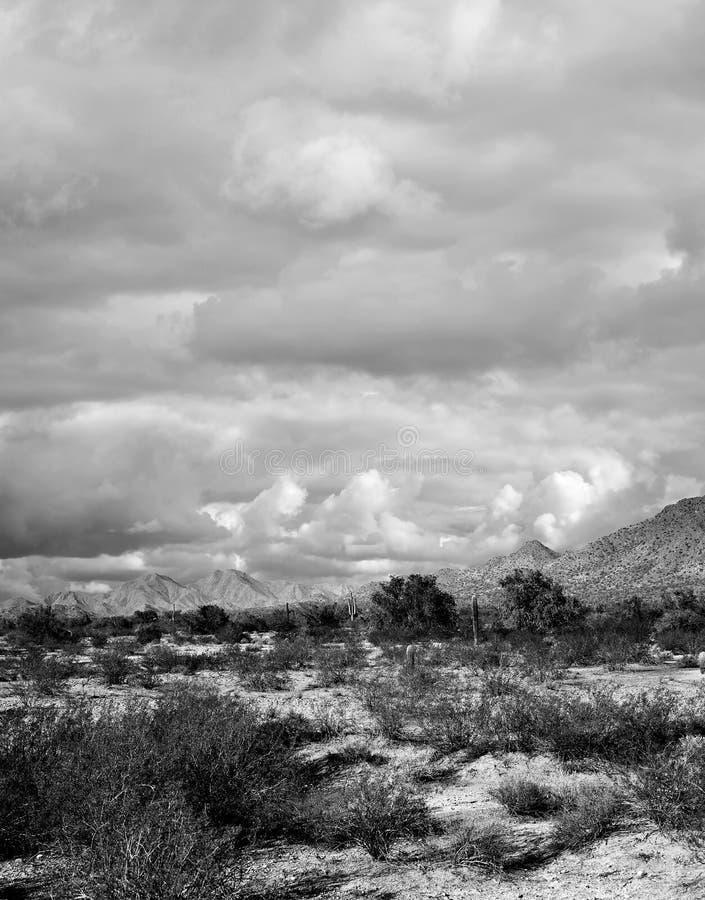 Sonora Desert Arizona. Mountains in the Sonora desert in central Arizona USA stock photo