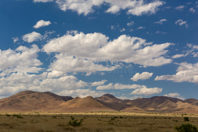 The Sonora desert in Mexico. With cluds in the blue sky royalty free stock photo