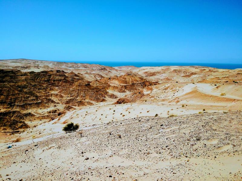 Sonora pustynia z Sabrà ¡ Clara zatoką zdjęcie stock