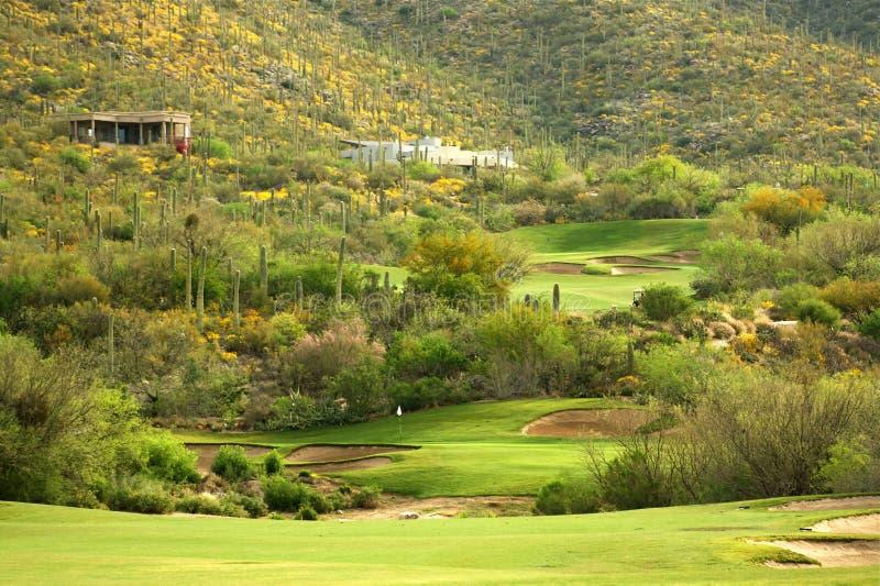 Sonoran Wüsten-Golf lizenzfreie stockfotos