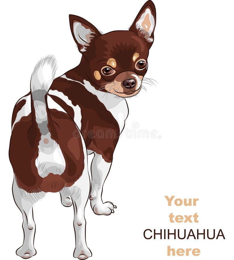 Sonrisa de la casta de la chihuahua del perro del bosquejo stock de ilustración