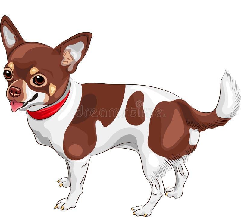 sonrisa de la casta de la chihuahua del perro del bosquejo del vector ilustración del vector