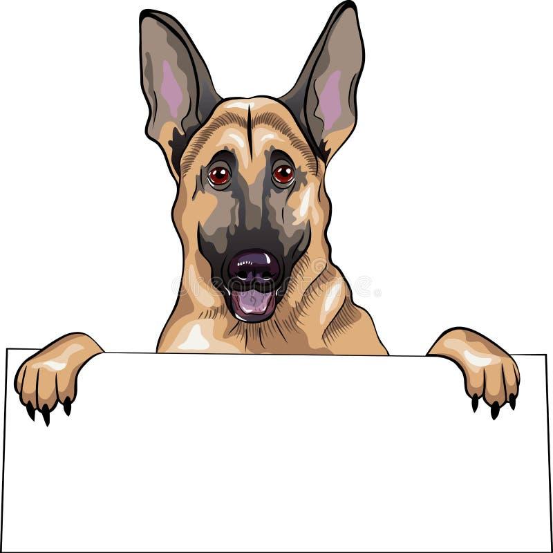 Sonrisas de la casta del pastor alemán del perro ilustración del vector