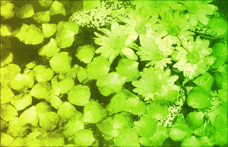 Soothing Zen Abstract royalty free stock photo