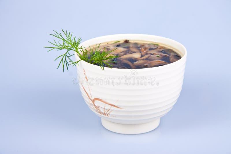 Download Sopa foto de stock. Imagem de prato, cultura, alimento - 16857892
